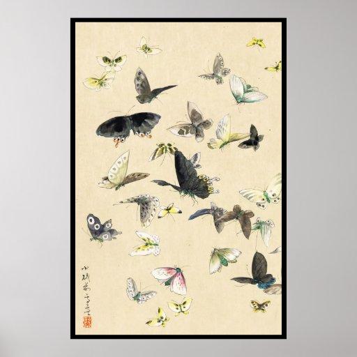 Voluta japonesa fresca de la mariposa del ukiyo-e póster