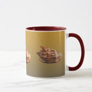 Volute Imperialis Mug