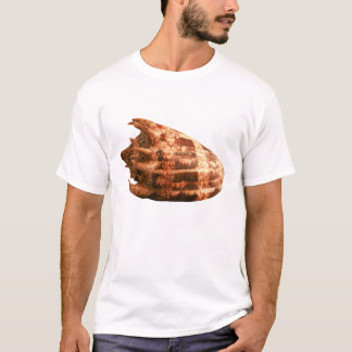 Volute Imperialis T-Shirt