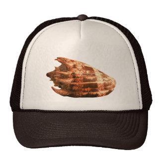 Volute Imperialis Trucker Hat
