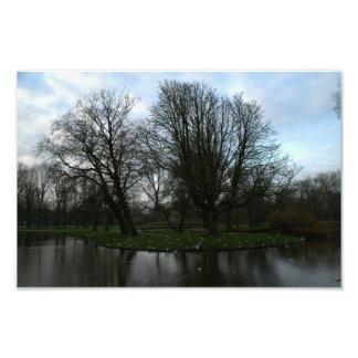 Vondel Park Amsterdam Photo Art