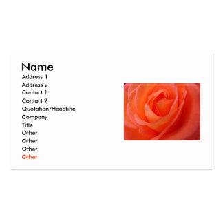 voodoo 3 6-6-06, Name, Address 1, Address 2, Co... Business Card