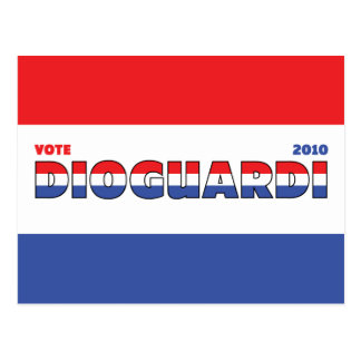 Vote DioGuardi 2010 Elections Red White and Blue Postcard