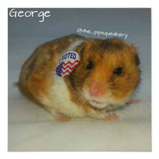 Vote for George! Personalized Invitations