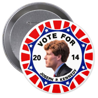 Vote for Joe Kennedy 2014 Pin