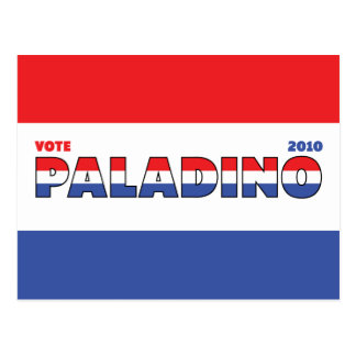 Vote Paladino 2010 Elections Red White and Blue Postcard