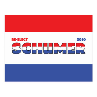 Vote Schumer 2010 Elections Red White and Blue Postcards
