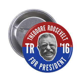 Vote Teddy 2 Inch Round Button