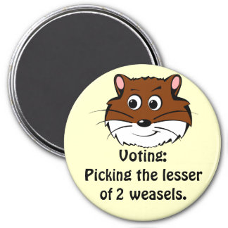 Voting - Picking the lesser of 2 evils Magnet
