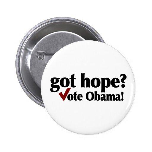 Voto conseguido Obama de la esperanza Pins