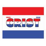 Voto Crist 2010 elecciones blanco y azul rojos Tarjetas Postales