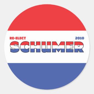 Voto Schumer 2010 elecciones blanco y azul rojos Pegatina Redonda