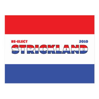 Voto Strickland 2010 elecciones blanco y azul Postales