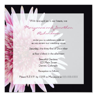 Vow Renewal Giant Pink and White Gerbera Daisy Card