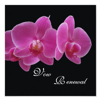 Vow Renewal Invitation -- Orchids