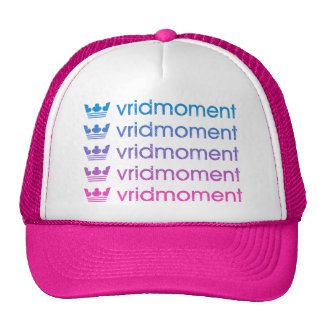 vridmoment_ 1990 _pink/blue trucker hat