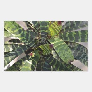Vriesea Splendens Bromeliad Plant Striped Leaves Rectangular Sticker