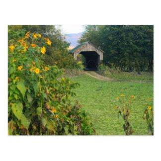 VT de Cambridge de los girasoles del puente cubier Tarjeta Postal