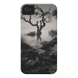 Vudú iPhone 4 Case-Mate Protectores