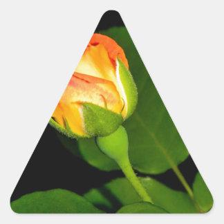 Vudú subió calcomanía trianguladas personalizadas