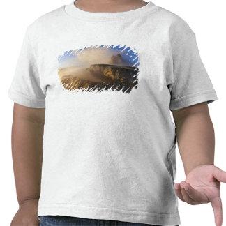 Vuele el géiser con la gama capsulada nieve 2 del camiseta