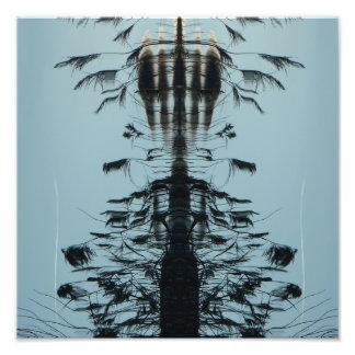 """""""Vuele libremente"""" la impresión abstracta de la Fotografías"""