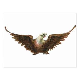 Vuelo americano del pájaro de Eagle calvo del patr Postales