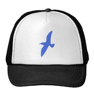 Vuelo azul del pájaro gorro