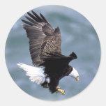 Vuelo de Eagle Etiquetas Redondas