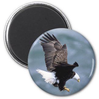 Vuelo de Eagle Imán Redondo 5 Cm