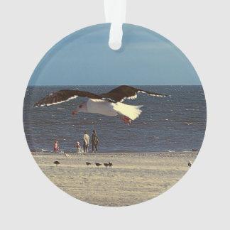 Vuelo de la gaviota en la playa de Coney Island