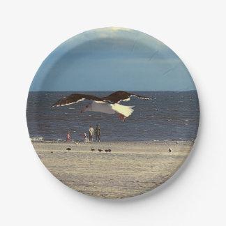 Vuelo de la gaviota en la playa de Coney Island Plato De Papel De 7 Pulgadas