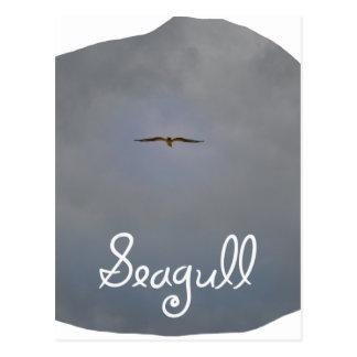 Vuelo de la gaviota en un cielo gris con la tarjetas postales