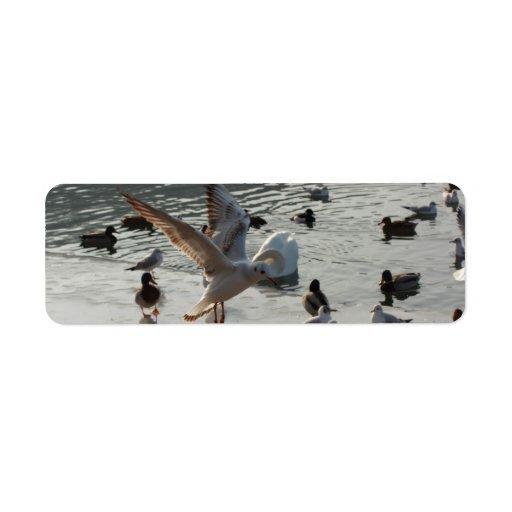 vuelo de la gaviota sobre el hielo etiqueta de remite