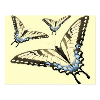 Vuelo de la mariposa tarjetas postales