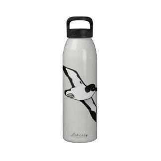 Vuelo de la meauca de Birdorable Newell Botellas De Agua Reutilizables