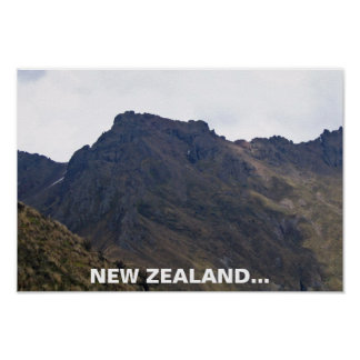 Vuelo de las rocas de Nueva Zelanda del poster de