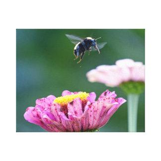 Vuelo del abejorro lona envuelta para galerias