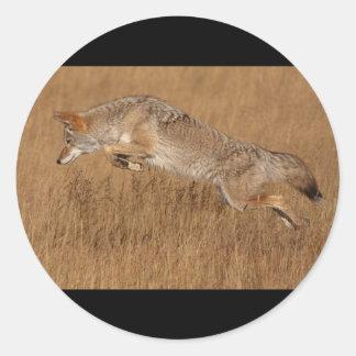Vuelo del coyote pegatina redonda