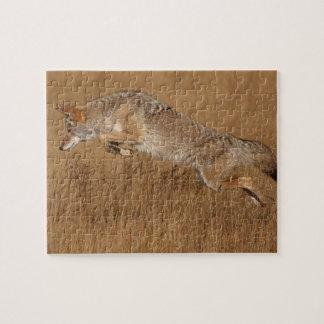 Vuelo del coyote puzzle