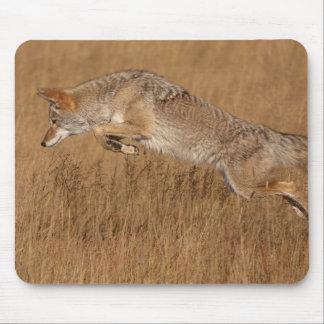 Vuelo del coyote alfombrilla de raton