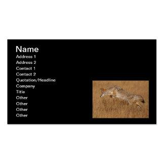 Vuelo del coyote tarjetas de visita