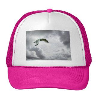 Vuelo del pájaro del cielo en nubes divinas gorras de camionero