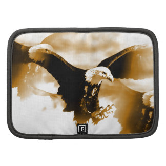 Vuelo Eagle Organizador