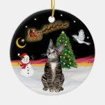 Vuelo nocturno - gato de Tabby de Brown 2 Ornato