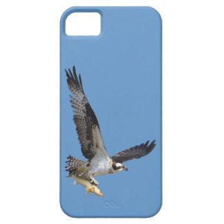 Vuelo Osprey que caza para los pescados Funda Para iPhone 5 Barely There