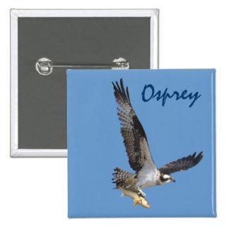 Vuelo Osprey que caza para los pescados Pin Cuadrado