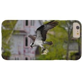 Vuelo Osprey que caza y que lleva pescados cogidos Funda Para iPhone 6 Plus Barely There