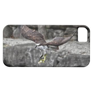 Vuelo Osprey y escena de la foto de la fauna de lo iPhone 5 Case-Mate Protector