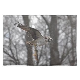 Vuelo Osprey y escena de la foto de la fauna de lo Mantel Individual